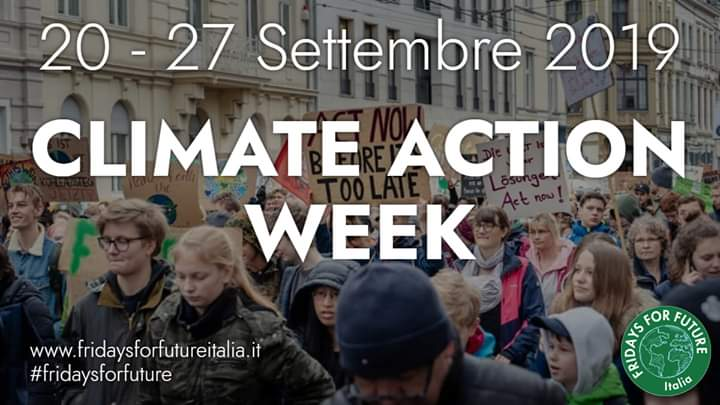manifestazioni fridays for future