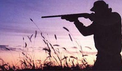 Bracconieri in Aspromonte usando armi dalla matricola abrasa, tre arresti